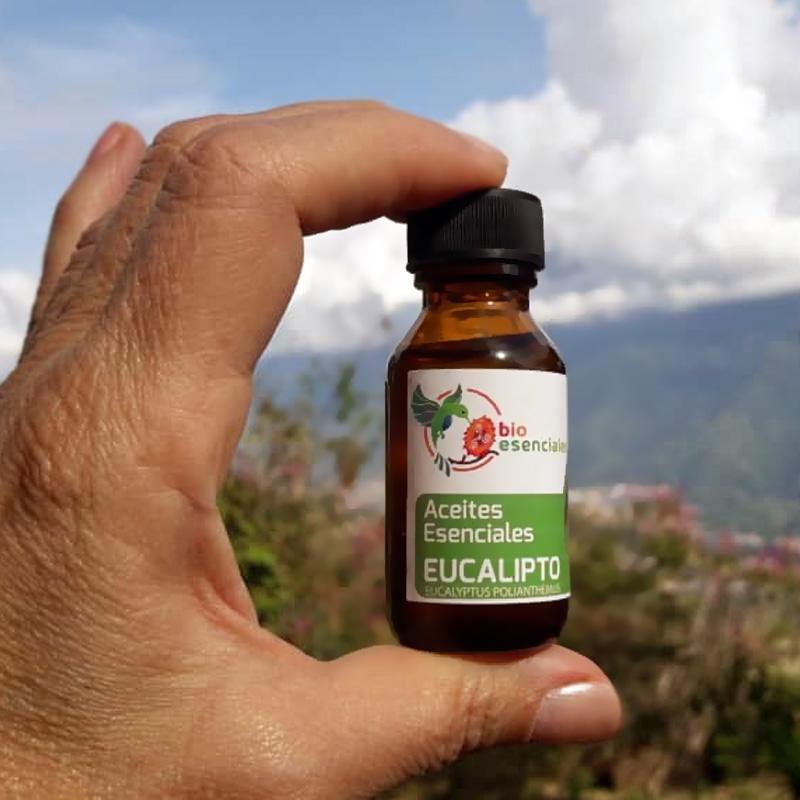 aceite-esencial-eucalito-bioesenciales