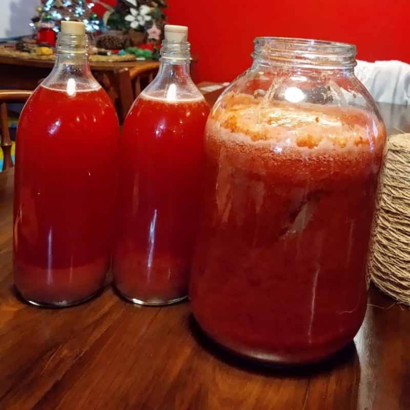 taller-fermentaciones-base2-frontal-la-casa-del-viento