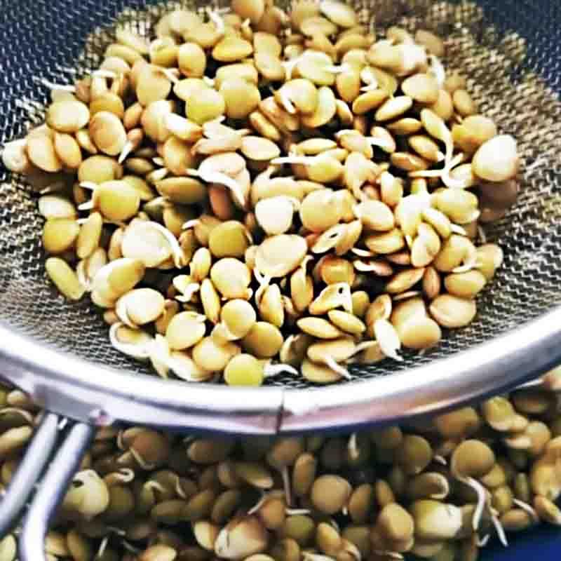 taller-fermentaciones-base2-galeria3-la-casa-del-viento