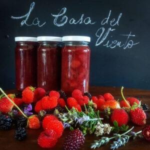 Mermelada sin azúcar a base de frutos rojos. La Casa del Viento