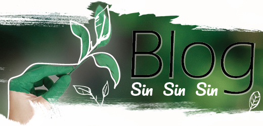 Bienvenidos a tu blog sinsinsin